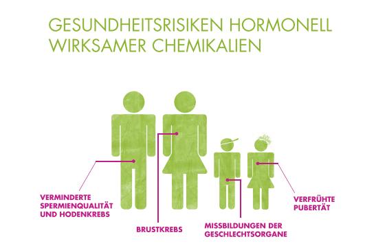 Gesundheitsrisiken bei hormonell wirksamen Chemikalien. Quelle: Bund / i-gelb