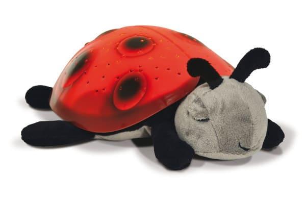 cloudb-ladybug-0