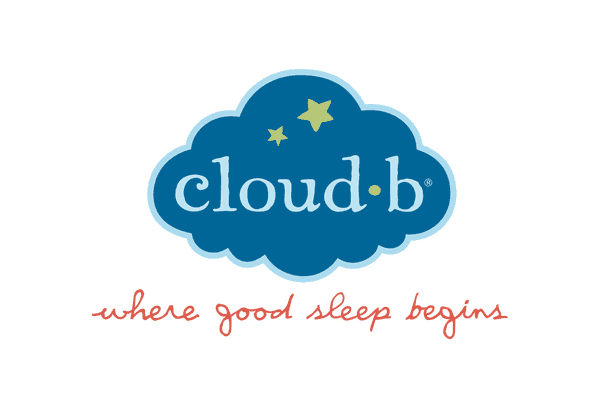 Cloudb-logo-large