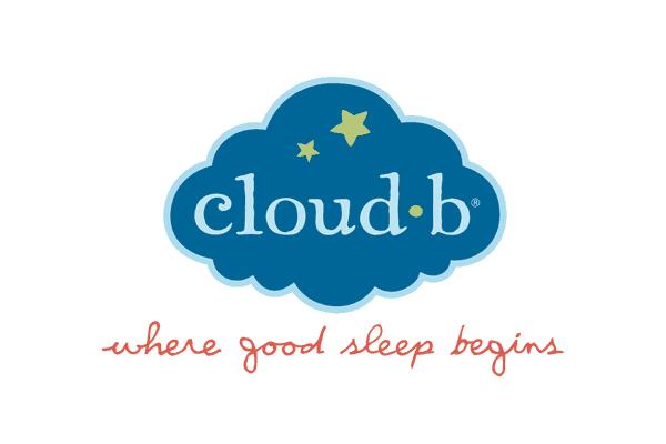 Cloudb-logo-large