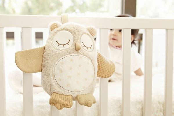 cloudb-owl-2