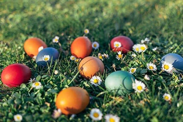 Ostereier färben mit Naturfarben - so geht's (© Thinkstock)