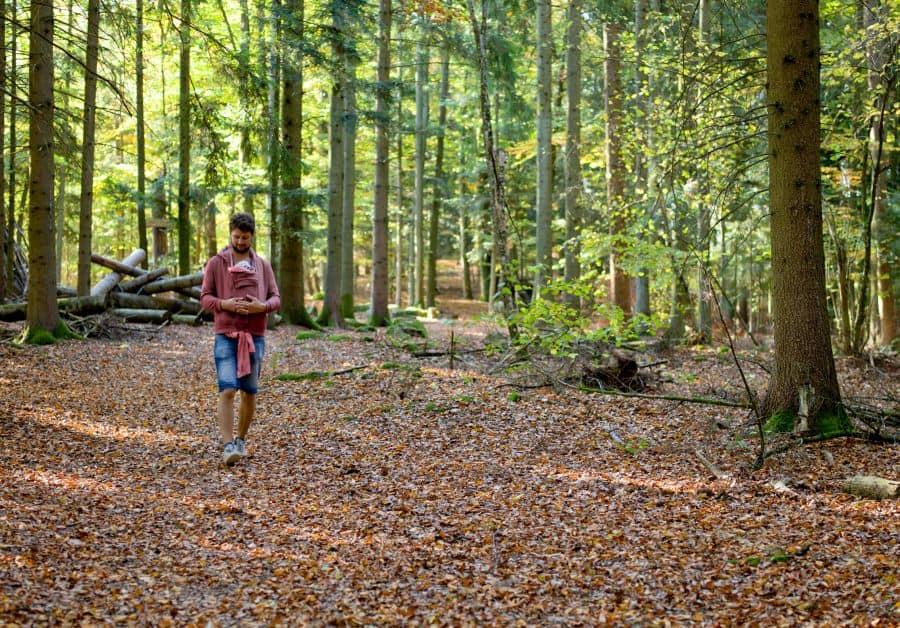 Ausgedehnte Spaziergänge durch den Wald